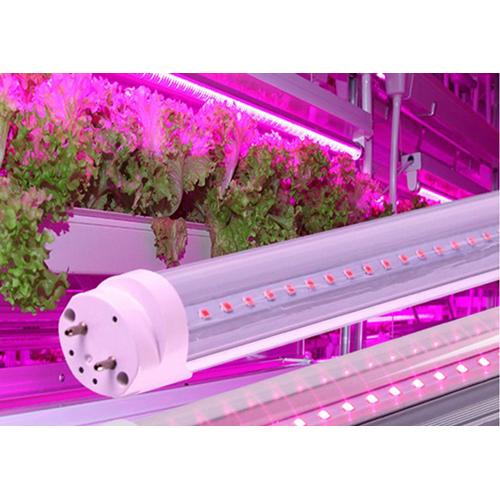 Led φθόριο 9W T8 G13 240V 60cm 360° για ανάπτυξη φυτών Φοs_me